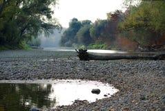 De rivier blind wapen van Donau stock foto