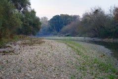 De rivier blind wapen van Donau royalty-vrije stock afbeelding