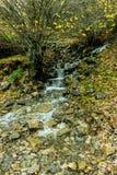 De rivier daalt door kanaal met rotsen stock foto's