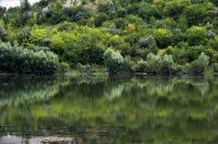 De rivier dichtbij de beboste banken stock foto's