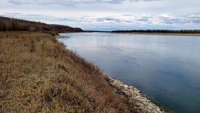 De rivier die van Missouri zacht de vroege grassen van het de lenteweiland overgaan stock footage