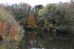 De rivier in Durham, het UK stock fotografie