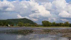De rivier en de bergmeningen van het de zomerlandschap op de achtergrond van de hemel stock videobeelden