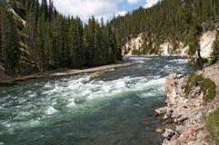 De rivier en de stroomversnelling van Yellowstone royalty-vrije stock foto