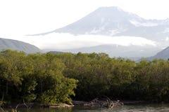 De rivier en de vulkaan Royalty-vrije Stock Fotografie