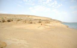 De rivier en de woestijn Royalty-vrije Stock Fotografie