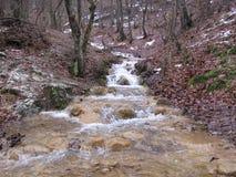De rivier Grza in Servië Stock Afbeelding