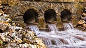 De rivier in het bos Stock Foto's