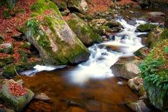 De rivier Ilse in Ilsenburg in het Nationale Park van Harz stock afbeelding