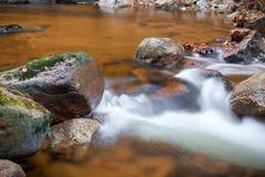 De rivier Ilse in Ilsenburg in het Nationale Park van Harz royalty-vrije stock foto's