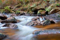 De rivier Ilse in Ilsenburg in het Nationale Park van Harz stock afbeeldingen