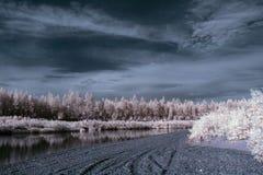 De rivier in infrared 1 Stock Fotografie