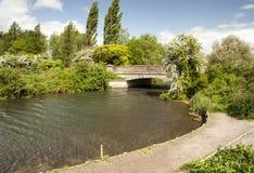 De Rivier Itchen, Winchester Royalty-vrije Stock Foto