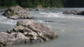 De rivier Katun van de drempelsberg. Altai Krai. Russia.Thresholds bergrivier Katun. Altai Krai. stock videobeelden