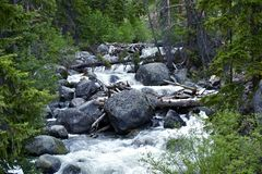 De rivier knarst Stock Foto's