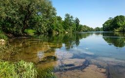 De rivier Kupa in Slovenië Stock Foto's
