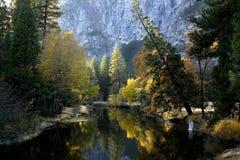 De Kleuren van het water Stock Foto's