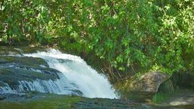 De rivier splitst van de richel op - boswaterval Royalty-vrije Stock Fotografie