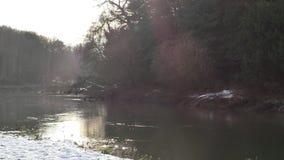 De rivier Trent vlak na de Rivierzeug heeft met het door Shugborough Estate en Great Hayward samengevoegd stock footage