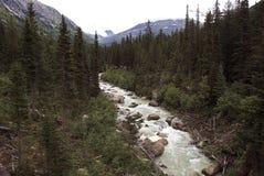 De rivier van Alaska stock afbeeldingen