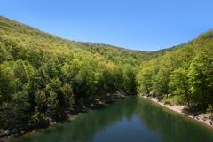 De rivier van Allegheny stock afbeeldingen
