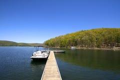 De rivier van Allegheny stock foto
