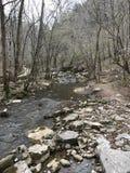 De Rivier van Arkansas met rotsen en bomen Royalty-vrije Stock Afbeelding