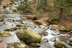 De rivier van Belokurikha. Stock Afbeelding