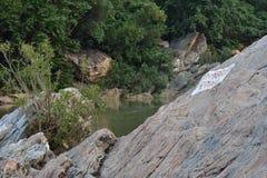 De rivier van de berg stock afbeeldingen