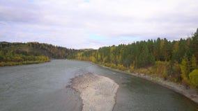 De rivier van de berg Berg Altai Daling stock videobeelden