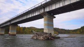De rivier van de berg Berg Altai Daling stock footage