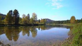 De rivier van de berg Berg Altai Daling stock video