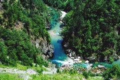 De rivier van de berg in Montenegro stock fotografie