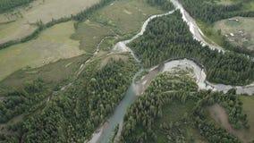 De rivier van de berg Snel stroomwater Rusland Altai stock footage