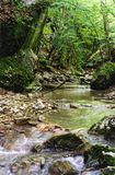 De rivier van bergen in de Krim Royalty-vrije Stock Afbeeldingen