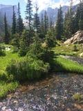 De rivier van de bergvallei Stock Foto