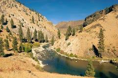 De Rivier van Boise stock fotografie