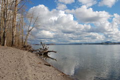 De rivier van Colombia Royalty-vrije Stock Foto