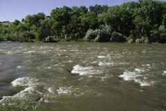 De Rivier van Colorado in Juni stock foto