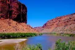 De Rivier van Colorado, Moab, Utah, zuidwesten Stock Fotografie