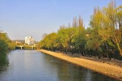 De rivier van Cris Royalty-vrije Stock Afbeeldingen