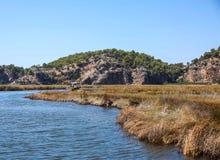 De rivier van Dalyan Stock Afbeelding