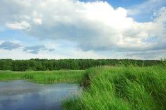 De rivier van de bank. Royalty-vrije Stock Afbeelding