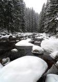 De rivier van de berg in de winter Stock Afbeelding