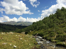 De rivier van de berg Het landschap van de berg Royalty-vrije Stock Afbeeldingen
