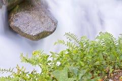 De rivier van de berg in Nationaal park Geres Stock Fotografie