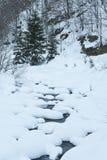 De rivier van de berg onder de bomen en de sneeuw Royalty-vrije Stock Foto's