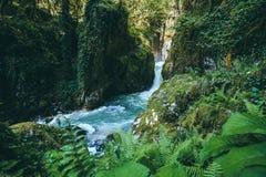 De Rivier van de bergwaterval met diep boslandschap Royalty-vrije Stock Fotografie