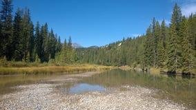 De rivier van de boogvallei banff stock foto's