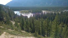 De rivier van de boogvallei banff royalty-vrije stock afbeeldingen